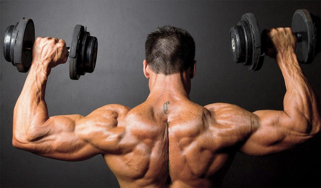 Как накачать плечи гантелями