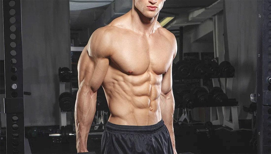Передняя зубчатая мышца: упражнения и советы по тренировке