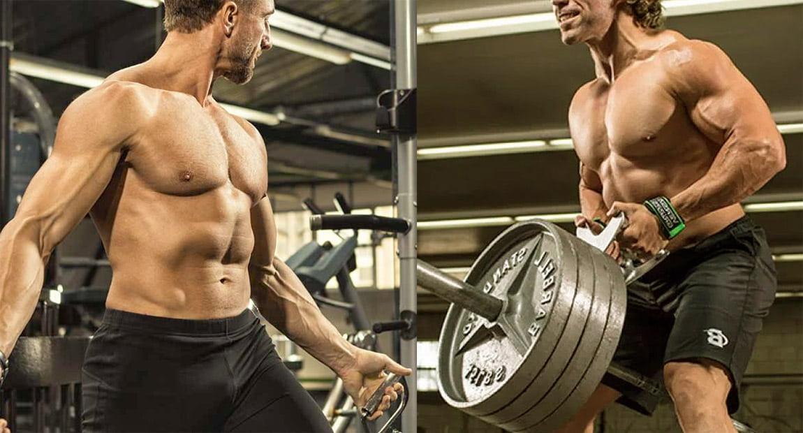 Программа «грудь спина». Тренировка спины и грудных в один день