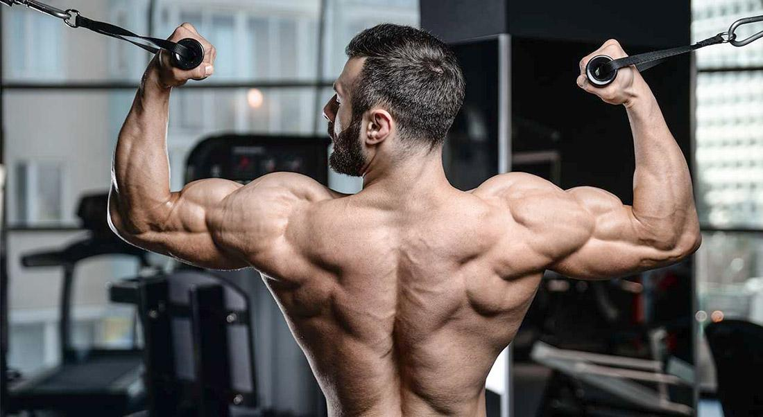Спина и бицепс в один день: программа тренировок