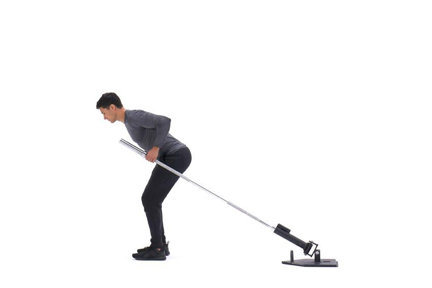 Как накачать спину со штангой