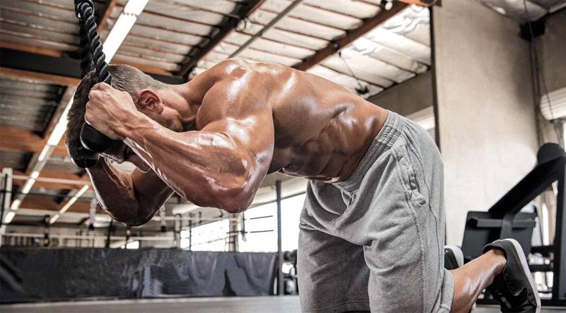 Тренажеры для пресса: лучшее для мышц живота