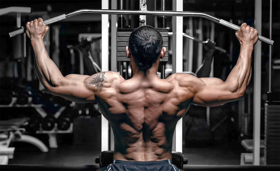 Тренажеры для спины: виды и советы по использованию